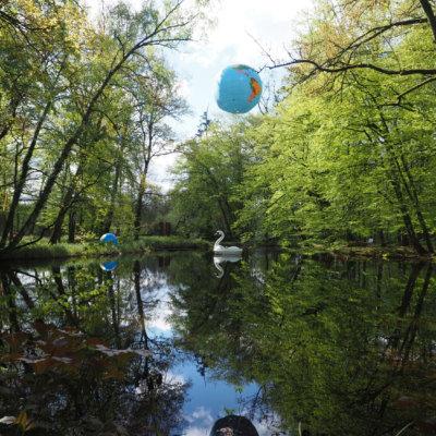 Waldinsel - Weiher mit Schwan zur Ausstellung 2017