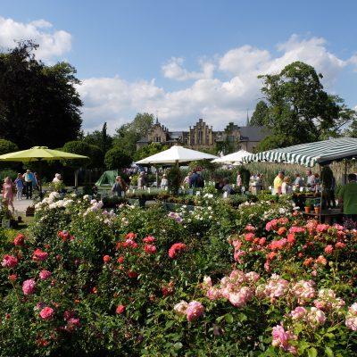 Schloss Ippenburg feiert den herbst